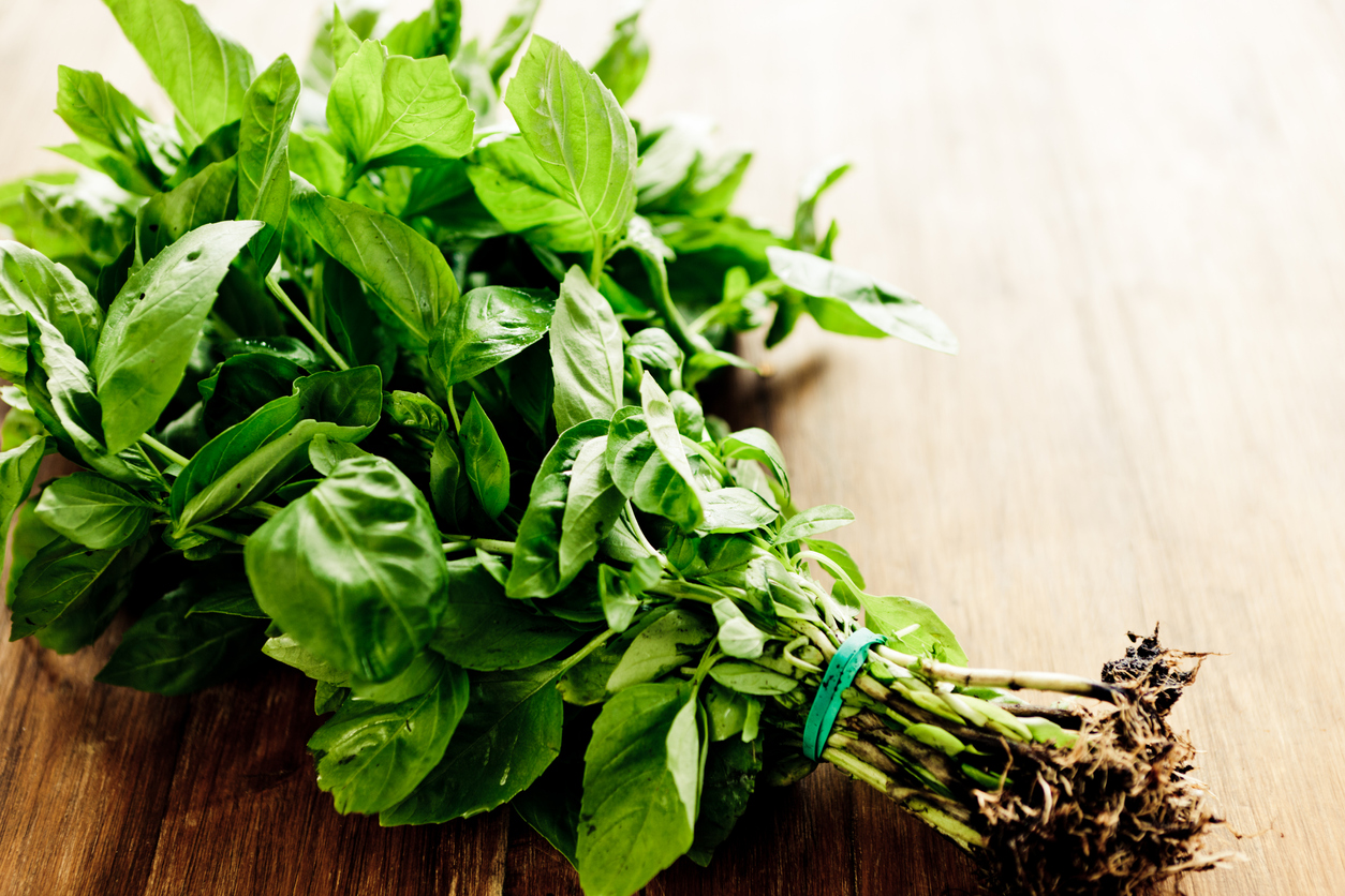 How to use basil